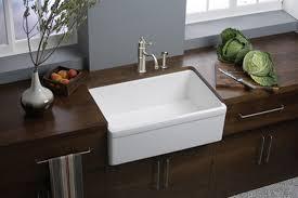Elkay Kitchen Sink Elkay Explore Undermount Sink Swuf28179