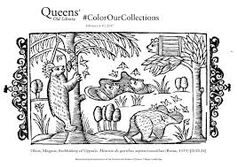 queens u0027 college library coloring book u2013 color our collections