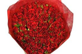 how much is a dozen roses dozen roses valentines day 51ggnqrwlal s day pictures