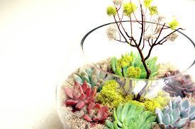 wedding centerpieces for a handcrafted wedding fishbowl terrarium