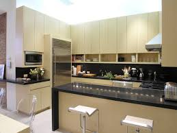 modern u shaped kitchen designs u shaped modern kitchen photos houzz