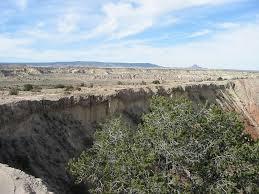 Co Surface Management Status Del Norte Map Bureau Of Land Management by White Ridge Bike Trails Bureau Of Land Management
