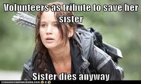 I Volunteer As Tribute Meme - don t you just hate it when that happens the hunger games know
