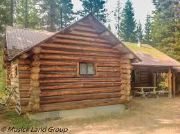 Cabin Homes For Sale Log Cabin With Acreage For Sale Elk City Idaho Log Homes And Cabins