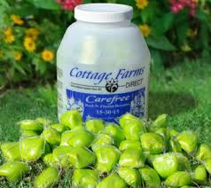 White Flower Farm Coupon Code - cottage farms u2014 seeds plants u0026 gardening supplies u2014 qvc com