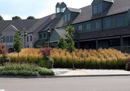 using ornamental grass in landscaping tomlinson bomberger
