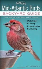 Backyard Birding Magazine Michigan U0027s State Bird The Robin Michigan Pinterest Robins