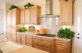 Full Size Of Lime Green Kitchen Paint Eco Kitchen Countertops Long - Eco kitchen cabinets