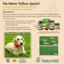 amazon com naturvet grasssaver plus enzymes for dogs 300 ct
