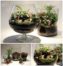 best 25 fairy terrarium ideas on pinterest terrarium terrarium