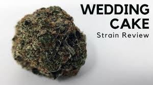 wedding cake genetics wedding cake cannabis strain information review