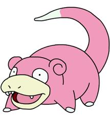 Slowpoke Meme - we should make slowpoke a meme imgur