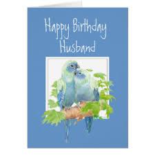 parrots greeting cards zazzle
