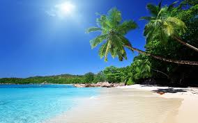 tropical beach wallpaper wallpapers browse caribbean beach desktop scenes wallpapers