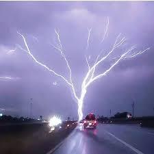 all hail the tree of light album on imgur