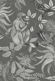47 best ardmore collection cole u0026 son wallpaper images on