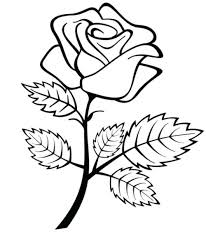 coloring pages of roses u2013 vonsurroquen