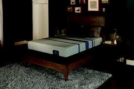 Tempurpedic Adjustable Bed Reviews Bedroom Serta Icomfort Mattress Serta Icomfort Savant Mattress