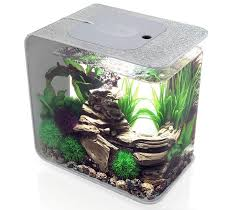 biorb flow 15 litre silver fish tank aquarium gardensite co uk