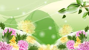 flowers wallpapers page 121 green nature lovely pink cute flower