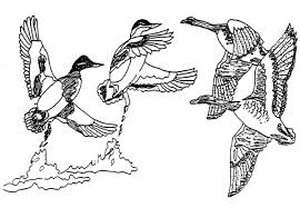 Free Wood Carving Downloads by Wildlife Engraving Patterns Power Carving Wood Carving High