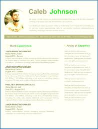resume templates for mac skills resume template word resume templates free pages pretentious
