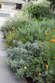 native plant landscaping ideas 325 best front yard images on pinterest landscaping ideas