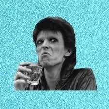 David Bowie Meme - create meme disturbed bowie david bowie mugshot pictures