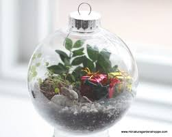 367 best terrariums images on pinterest garden terrarium