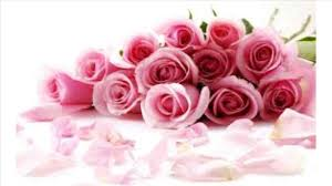 buy roses valentines day day gifts when should i buy roses save money to