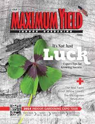 maximum yield issuu