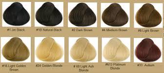 sebastian cellophane colors brown hair color chart loreal brown hairs