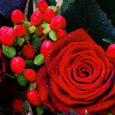 Love Flowers Flower Love St Hallvardmenighet