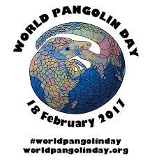 world pangolin day world pangolin day