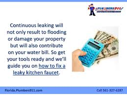 How To Fix A Leaky Kitchen Faucet The West Palm Beach Plumber U0027s Manual On How To Fix A Leaky Kitchen Fa U2026