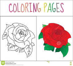 sketch rose page rule royalty free stock photography image 28950297