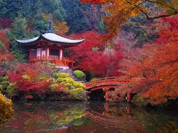 what is the best place to visit in japan during autumn quora