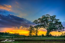 Beautiful Landscape Pictures by Virginia Landscape Beautiful Sunset With Tree