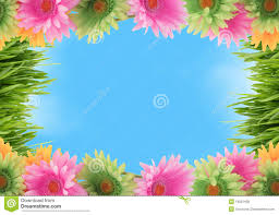 colorful floral spring border royalty free stock photos image