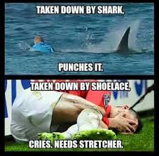 Shark Meme - the best mick fanning shark attack memes to bless the internet