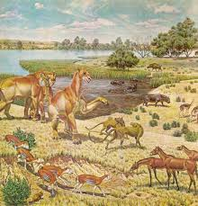 What Is A Mural by File Miocene Jpg Wikimedia Commons