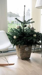 mini tree in a basket with striped ornaments interiors designed