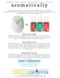 essential oils for fragrance ls 9 best images about essential oils on pinterest diffusers
