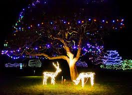 enjoy christmas lights holiday decorations at saint andrews nb