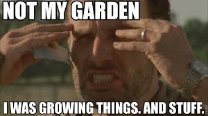 Crying Rick Meme - rick grimes meme not my garden i was growing things and stuff