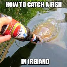 Funny Fish Memes - catching a fish in ireland meanwhile in know your meme