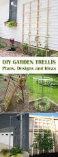 diy garden trellis plans designs and ideas