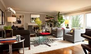 zebra rug living room u2013 tiny house