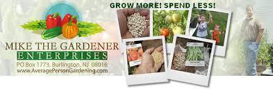 get rid of ants in your vegetable garden