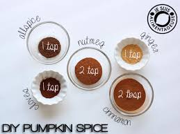 Asha Moroccan Mediterranean Kitchen - 28 what is pumpkin spice made of 10 items that prove the